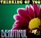thinkinr67ue456gofyou beautiful2