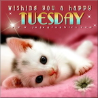 wishing you a happy tuesday 2