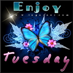 enjoy tuesday 17