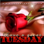 have a great tuesday 17