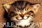 smile-its-friday-kitten-graphic