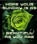 sunday graphics 186185