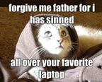 hilarious-meme-jesus-kitty-funny-cat-photos6