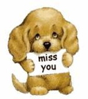 miss you comment graphic 2217257bwit1l1ob1