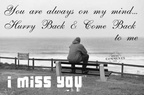 miss you graphic comment 685081