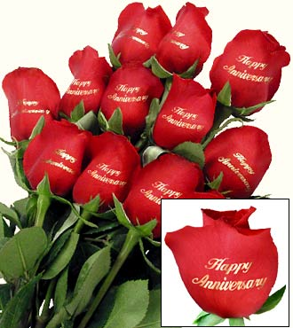 happy-anniversary-red-rose-graphic-for-facebook-share.jpg