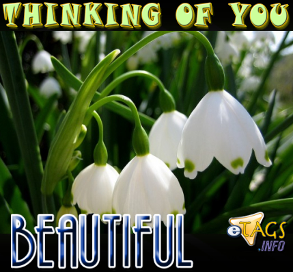 thinkindtyudr6uy76gofyou_beautiful2.jpg
