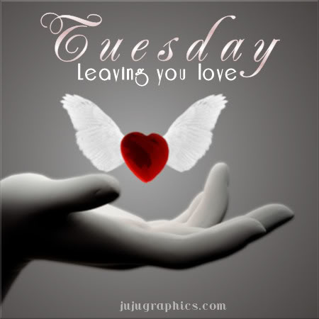tuesday leaving you love.jpg