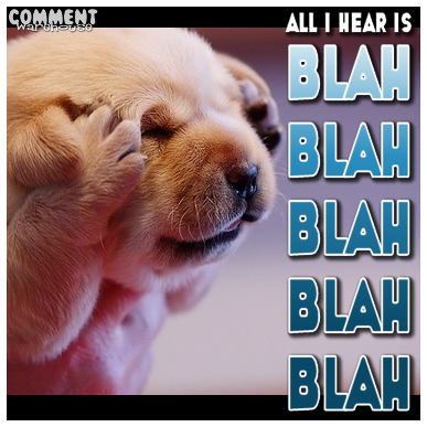 all_i_hear_is_blah_blah_blah.png